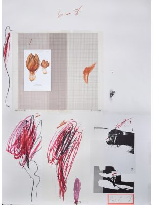 Natural History, Part 1, Mushrooms N. IX by Cy Twombly - Contemporary Artwork