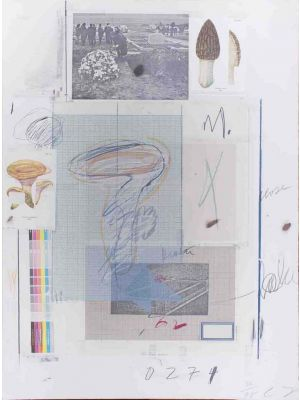 Cy Twombly, twombly, Natural History, Part 1, Mushrooms N. VII , artwork, collage, hand signed, prints, natural history, artwork, art for sale, art, buy art online, prints, lithograph, online, artworks, artwork, etchings, etching, multiples, artists artwo