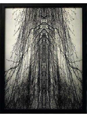 Cathedral by Claudio Palmieri - Contemporary Artwork