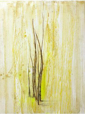 Grass Marks by Claudio Palmieri - Contemporary Artwork