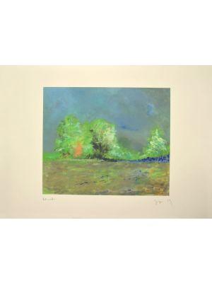 Le Ciel de Flandre is an original artwork realized by the Belgian artist Martine Goeyens.