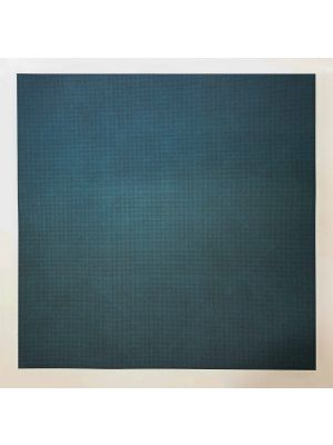 Blue lines in four directions on colour by Sol Lewitt - Contemporary Artwork