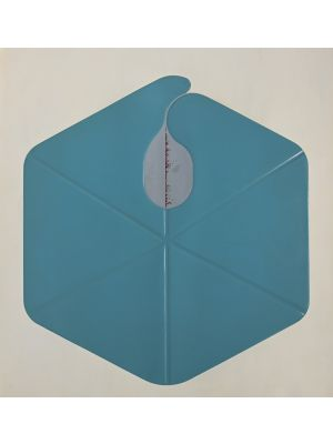 Hexagon by Shu Takahashi - Contemporary Artwork
