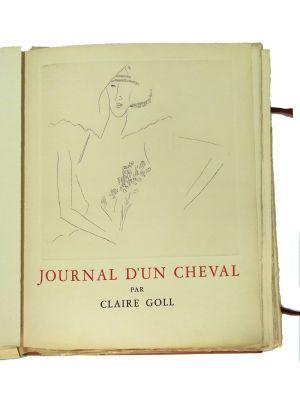 Journal d'un cheval - SOLD